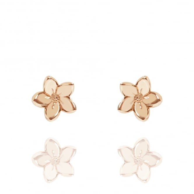 Love Forget Me Not Stud Earrings Rose Gold