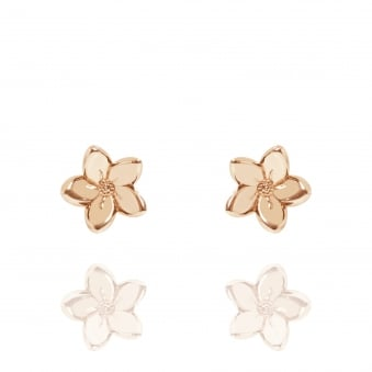 Forget Me Not Stud Earrings Rose Gold
